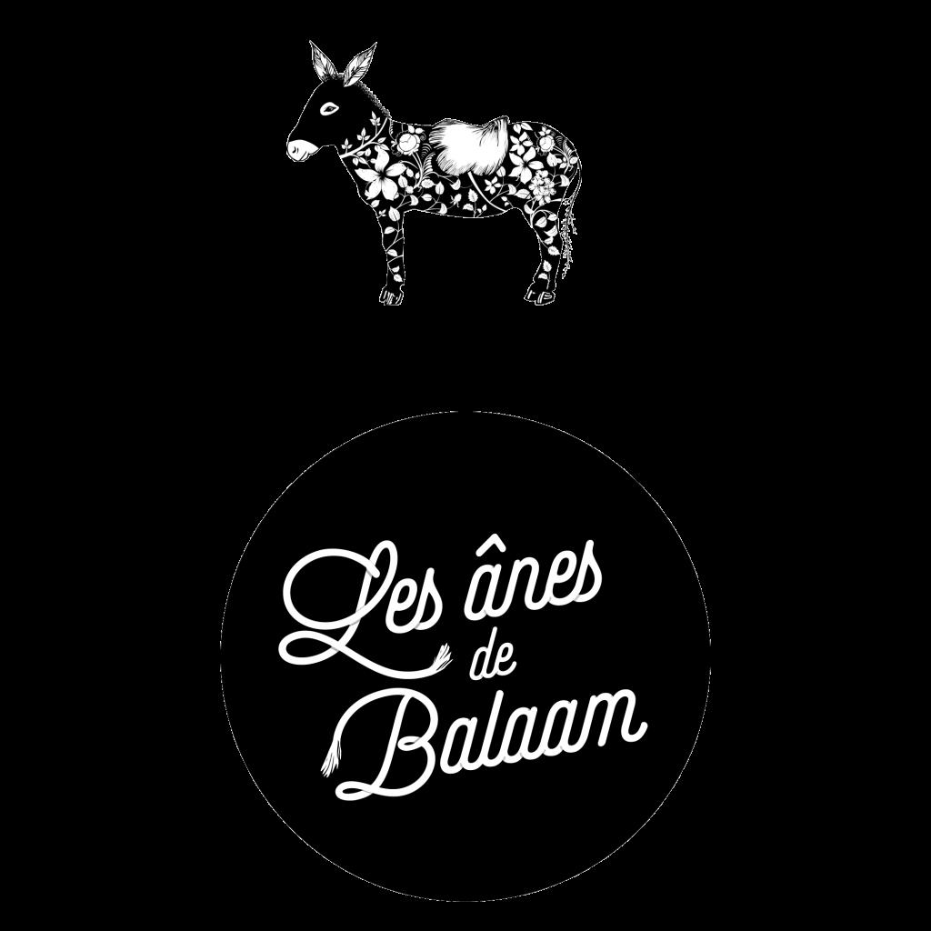Les ânes de balaam, graphiste lyon, identité visuelle